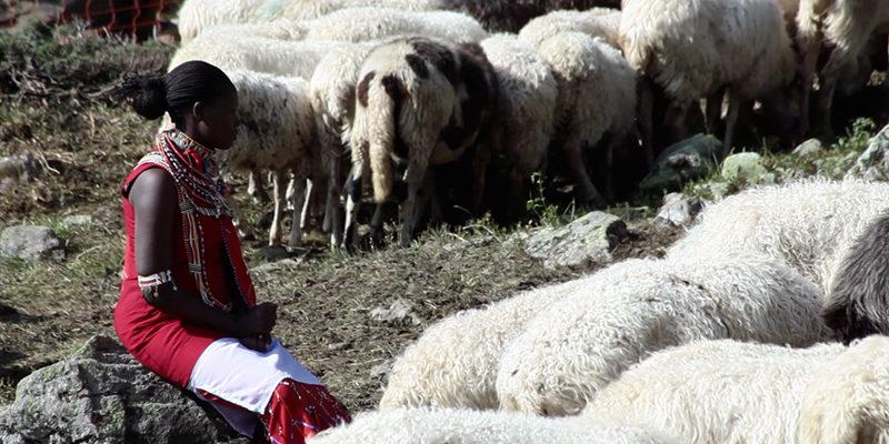 masai-in-the-alps