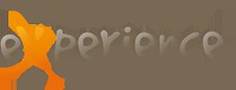 logo vallestura experience
